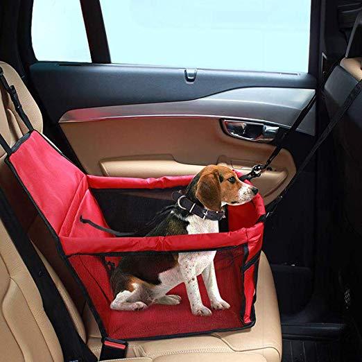 Siège auto pour chien